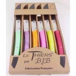 Coffret de 6 couteaux Le Thiers plexi couleurs été LES COFFRETS